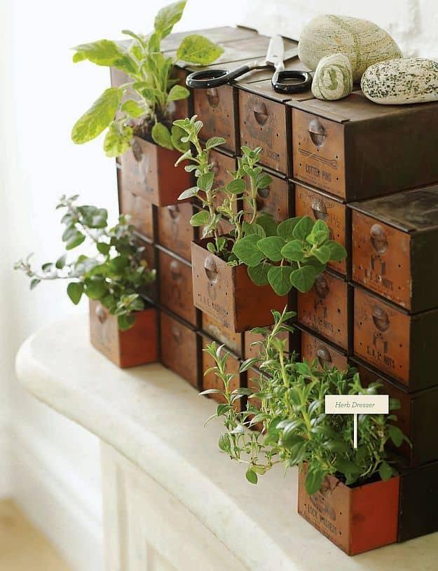 Indoor-Herb-Garden-Ideas-Drawer-Herb-Garden-1
